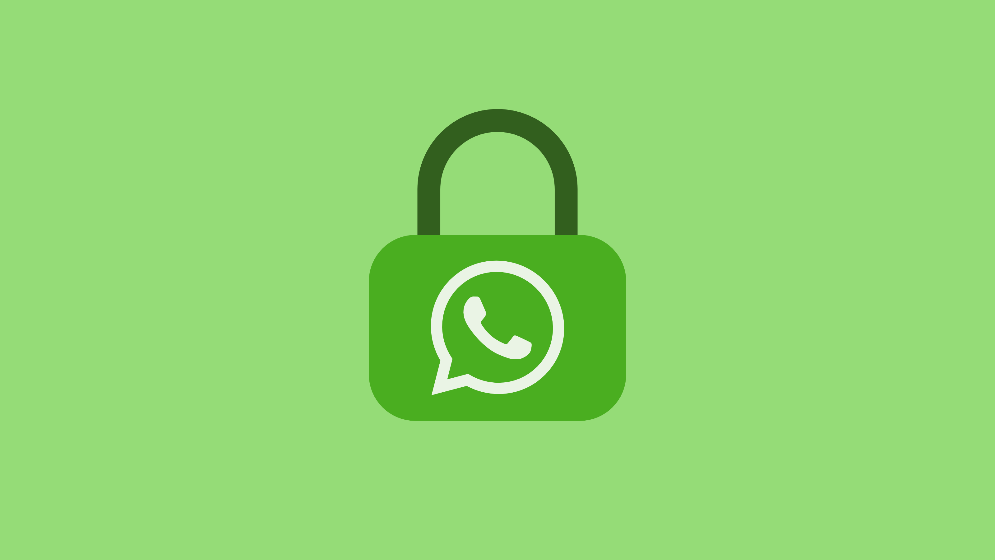 privacy security whatsapp