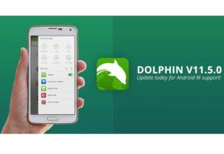 Dolphin Browser Nedir ve Nasıl Çalışır? Dolpin Browser İncelemesi!