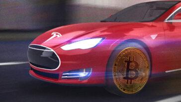 tesla - bitcoin - tesla bitcoin - elon musk - bitcoin ne kadar