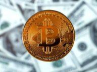 kripto para tüccarlarının yaptığı hatalar - kripto para al/sat yapanların hataları - kripto para hataları - kripto para borsaları - kripto para